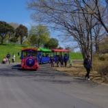 『4月の国営昭和記念公園Ⅲ;立川市』の画像
