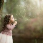 『深い森のなかで』の画像