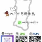 めだか男鹿半島(秋田 男鹿)