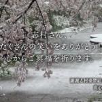 【台湾】蔡英文総統、日本語で追悼ツイート「志村さん、たくさんの笑いをありがとう」