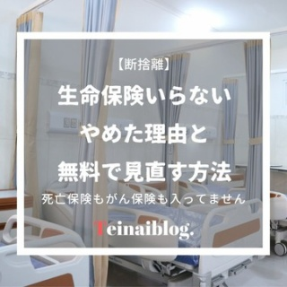 ていない(ていねいじゃない暮らしのブログ)