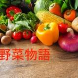 『うちの子、おじいちゃんの畑で収穫した野菜はよく食べる』の画像