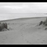 『カメラとフィルムをカバンに詰めて、海に行ってきた』の画像
