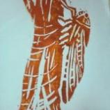『蝉の大合唱』の画像