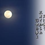 『浮世の夢』の画像
