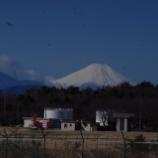 『3月の国営昭和記念公園;立川市』の画像