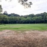 『オープンが待ち遠しい!浜松城公園に出店予定のスタバ予定地周辺を見てきたよー』の画像