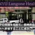 【驚愕】ブタの腎臓を人間に移植する手術、成功する