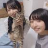 『【朗報】佐倉綾音さん、洲崎綾さんの新居を訪れる!!』の画像