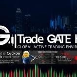 『Tradeview(トレードビュー)のプレミアオンラインソーシャルトレーディングサイト「TradeGATEHub」とは?』の画像