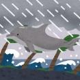【台風速報】台風12号「ドルフィン」発生。
