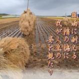 『フォト短歌「台風一過」』の画像