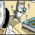 自動でフタが開く猫用ご飯入れを奮発して買った結果