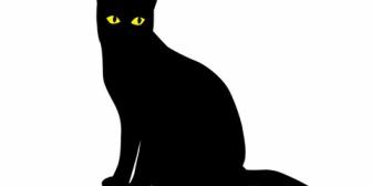 何日も帰ってこない飼い猫が窓の外から入ってくる夢を祖母が見たらしい。そして数日後、夢で見た窓の下で猫の遺体を発見したと。動物の持つ不思議な力ってきっとあると思う