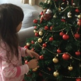 『娘にサプライズクリスマスツリー!』の画像
