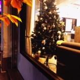 『クリスマスツリー 点灯☆』の画像