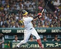 阪神中谷とかいうロマンの塊みたいな選手