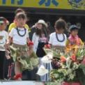 第23回湘南祭2016 その130(振り込め詐欺撲滅PR)