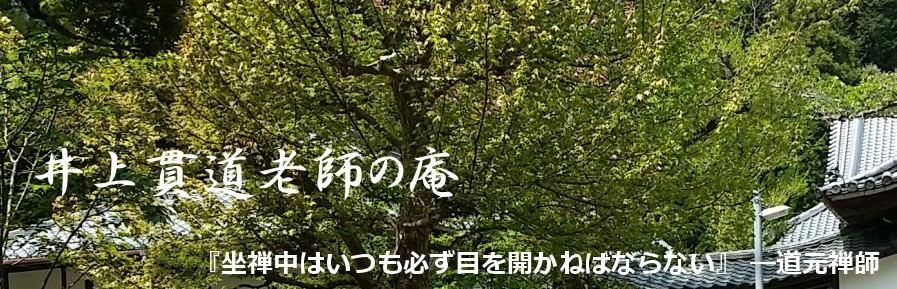 坐禅の仕方と悟り,見性,身心脱落:井上貫道老師の庵 まとめサイト イメージ画像