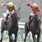 『【神戸新聞杯結果】ステラヴェローチェが差し切り重賞2勝目!シャフリヤールは4着に敗れる』の画像