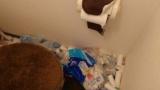 トイレットペーパーの芯ってなんか捨てるのめんどくさいよな