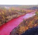 川の水が突然「真っ赤」に、住民騒然 ロシア北極圏の町