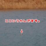 『【スナイパになる為にその九】猟期終盤。普通に大猟。』の画像