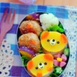 『普通のおにぎり弁当を5分でわんちゃん弁当に』の画像