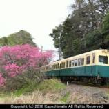 『三岐鉄道 200・270系 三重交通塗装』の画像