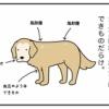 エフ漫画『検査結果待ちダイエット』