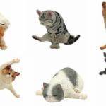 「ヨガドッグ」に続き「ヨガキャット」もフィギュアで登場!「ANIMAL LIFE Baby Yoga Cat」