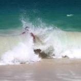 『海水の中の生命』の画像