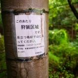 『秩父浦山ダムの廃墟!「通行止め」を突破した結果…!』の画像