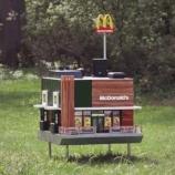 『世界一小さなマクドナルド:蜜蜂フレンドリー』の画像