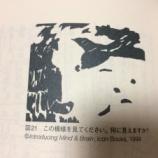 『小学6年生に読み聞かせ 今日は「脳は疲れない(糸井重里・池谷裕二著)」を題材に』の画像