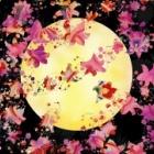 『さそり座満月のリーディングを公開いたしました!』の画像