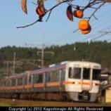 『柿と中央西線』の画像