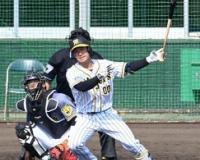 阪神・山本泰寛(紅白戦) .500(6-3) 2打点 ←こいつ