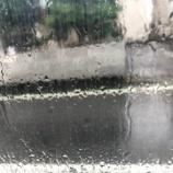 『Rainy Day☔突撃インタビュー』の画像