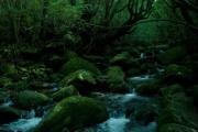 水を通した地球環境を考えよう!~千葉工業大学 地圏環境工学研究室の紹介~