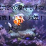 『自炊に次ぐ自炊の話!!!』の画像