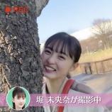 『【動画あり】かわえええwww 桜の木からひょっこり顔を出す遠藤さくらさんwwwwww【乃木坂46】』の画像
