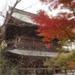 鎌倉ポタてく ー ポタリングと散歩で、ご近所鎌倉・湘南を巡ります