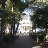 『森の緑の中の大倉山記念館ホール』の画像