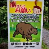 『埼玉県内の山で野生動物を見かけて思うこと』の画像