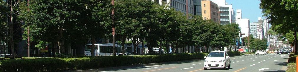 ユース福岡の日々是好日 イメージ画像