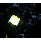 『灯りのもと』の画像