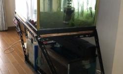 【画像】大阪地震で水槽の載ったスチール棚がギリギリで耐える