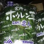 北海道平取町の農家奮闘記