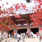 京都の外に住む京都好きのブログ